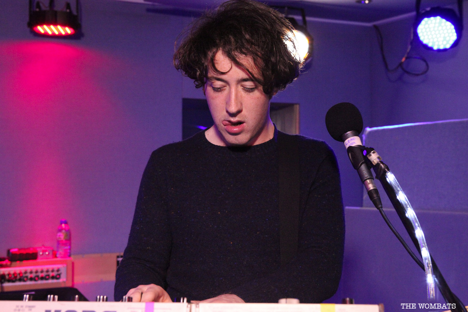 009_016_The_Wombats_by_Harriet_Armstrong